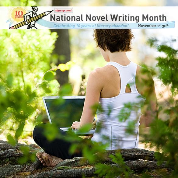 november novel writing