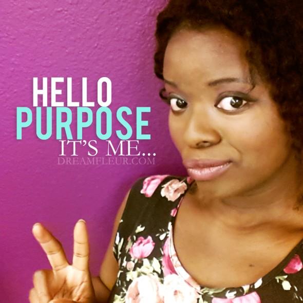 youremadehellopurpose